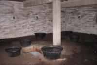 Solusi Mengatasi Rumah Walet Kosong