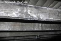 sirip rumah walet berjamur